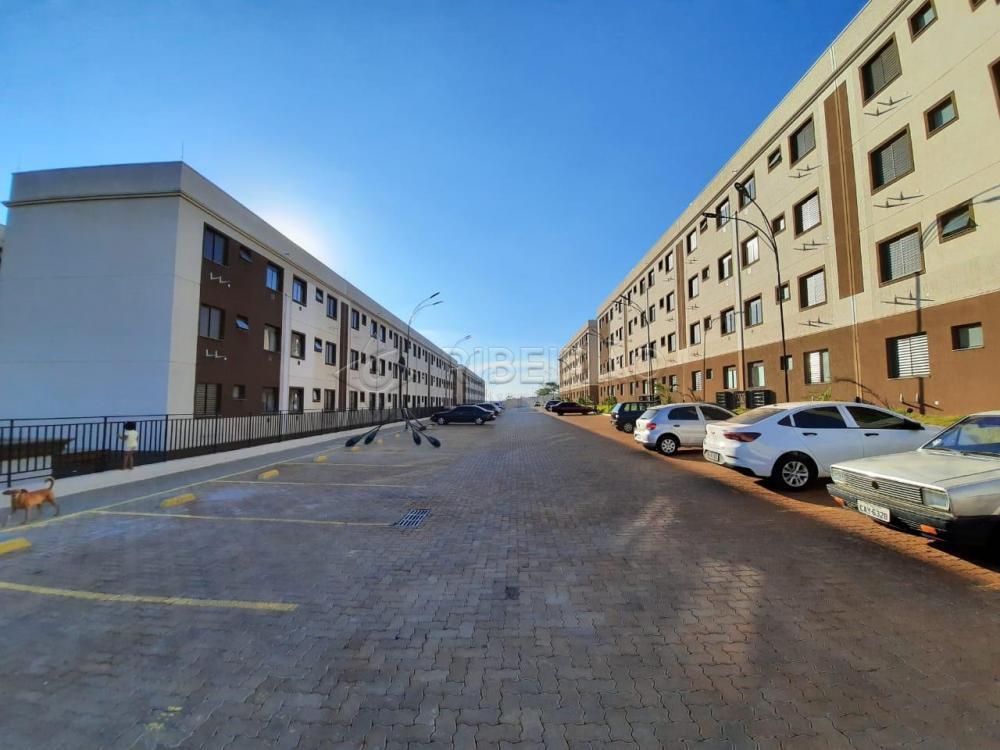 Alugar Apartamento / Padrão em Bonfim Paulista apenas R$ 600,00 - Foto 16