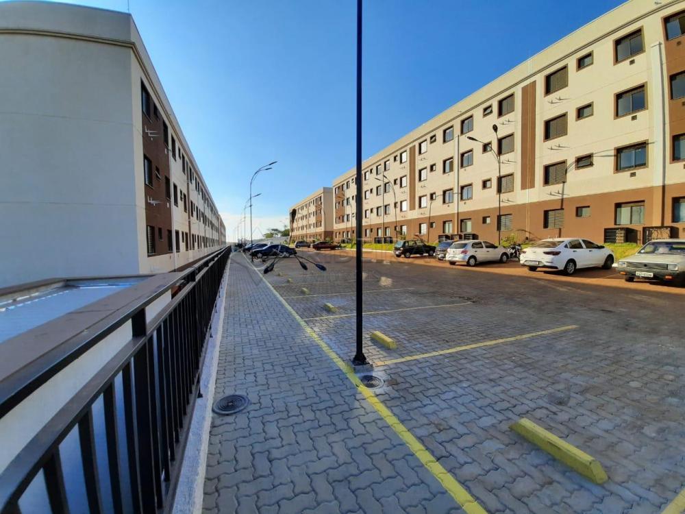 Alugar Apartamento / Padrão em Bonfim Paulista apenas R$ 600,00 - Foto 17
