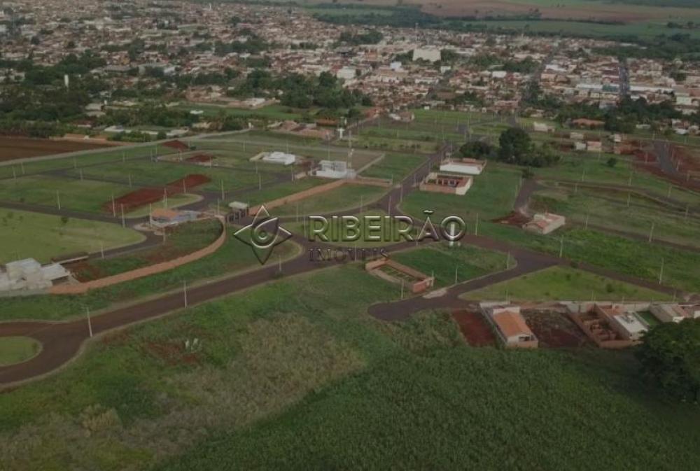 Comprar Terreno / Padrão em Morro Agudo R$ 90.000,00 - Foto 3