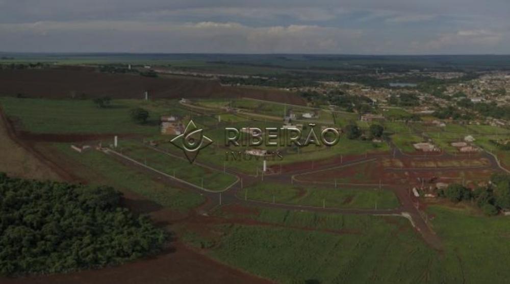 Comprar Terreno / Padrão em Morro Agudo R$ 90.000,00 - Foto 6