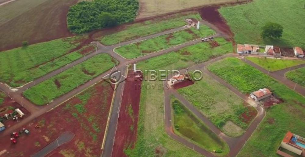 Comprar Terreno / Padrão em Morro Agudo R$ 110.000,00 - Foto 1