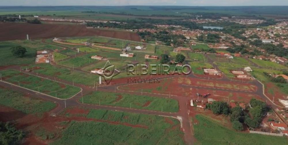 Comprar Terreno / Padrão em Morro Agudo R$ 110.000,00 - Foto 2