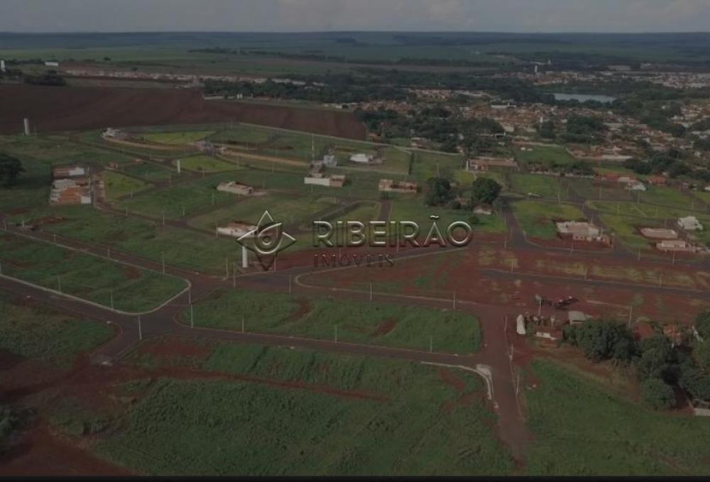 Comprar Terreno / Padrão em Morro Agudo R$ 110.000,00 - Foto 4