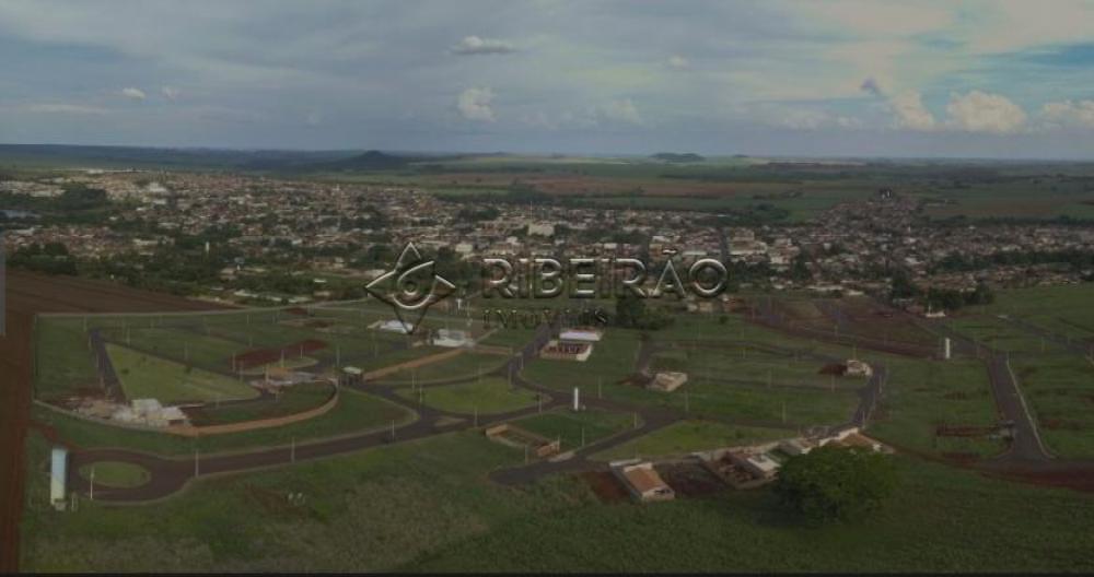 Comprar Terreno / Padrão em Morro Agudo R$ 110.000,00 - Foto 5