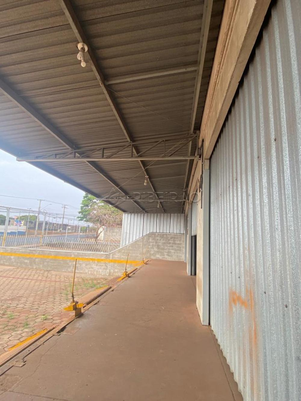 Alugar Comercial / Galpão em Ribeirão Preto R$ 16.000,00 - Foto 9