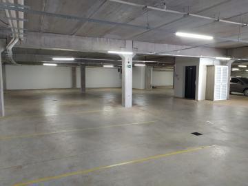 Alugar Comercial / Área em Ribeirão Preto. apenas R$ 3.400,00