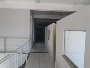 Alugar Comercial / imóvel comercial em Ribeirão Preto R$ 7.500,00 - Foto 4