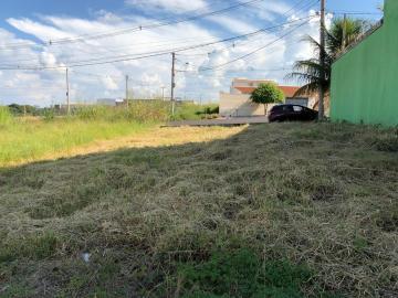 Alugar Terreno / Padrão em Ribeirão Preto. apenas R$ 125.000,00