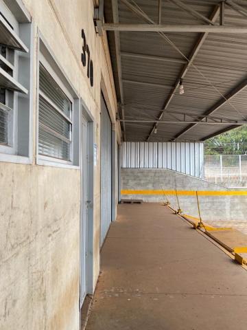 Alugar Comercial / Galpão em Ribeirão Preto R$ 16.000,00 - Foto 3