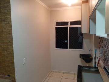 Alugar Apartamento / Padrão em Ribeirão Preto R$ 800,00 - Foto 9