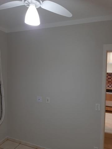 Alugar Apartamento / Padrão em Ribeirão Preto R$ 800,00 - Foto 15